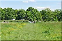 TQ1450 : Steers Field, Denbies Hillside by Alan Hunt