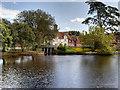 SU3802 : Beaulieu Mill Pond and Dam by David Dixon