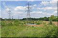 TQ0663 : Former gravel pit near Addlestone by Alan Hunt