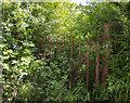 J3567 : BWC gate, Knockbracken by Rossographer