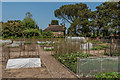 TQ0659 : Kitchen garden by Ian Capper