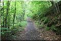 SO1800 : Sirhowy Valley Walk east of Argoed by M J Roscoe
