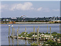 SZ0288 : Brownsea Lagoon, Tern Islands by David Dixon
