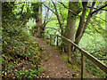 SZ0690 : Path along the edge of Branksome Dene Chine by David Dixon
