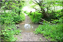 ST6961 : Ford at Inglesbatch by John Walton