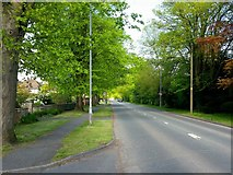 SO4841 : King's Acre Road, looking west by Jonathan Billinger