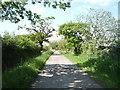 NY2255 : Track (bridleway) to Longlands Head Farm by JThomas