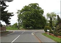TM0855 : Park Road, Needham Market by Adrian Cable
