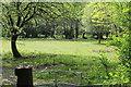 ST1899 : Riverside pasture below Grwhay by M J Roscoe