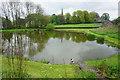 SK1566 : Duckpond in Monyash by Bill Boaden