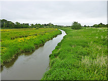 TQ5203 : River Cuckmere upstream of Long Bridge by Robin Webster