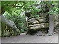 TQ5538 : The Devil's Oak at High Rocks by Marathon