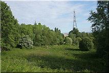 NS5073 : Auchnacraig Woodland Park by Richard Sutcliffe