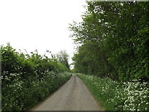 TM0949 : Hall Lane, Nettlestead by Adrian Cable