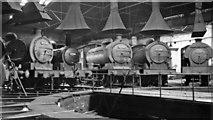 NZ4057 : Inside a round-house at Sunderland South Dock Locomotive Depot, 1954 by Walter Dendy, deceased