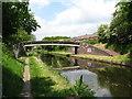 SP0394 : Brickfields Turnover Bridge-Tame Valley Canal, West Midlands by Martin Richard Phelan