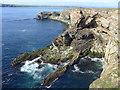HU1656 : Cliff scenery at Foglabanks by Julian Paren