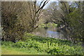 TL0249 : River Great Ouse by N Chadwick