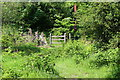SO1901 : Stile at junction of footpath and byway by M J Roscoe
