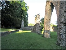 H8744 : The ruins of Armagh's Franciscan Friary by Eric Jones