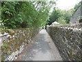 NZ0771 : Path, Stamfordham by Richard Webb