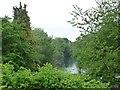 SU7239 : King's Pond, Alton [northern end] by Christine Johnstone
