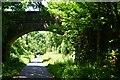 SS4719 : Bridge over the Tarka Trail by John Myers