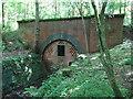 SE8664 : Northern portal of Burdale Tunnel by Gareth James