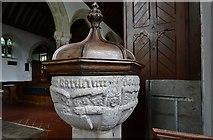 SX1156 : St. Winnow, St. Winnow Church: The granite font 1 by Michael Garlick