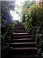 SZ0791 : Westbourne: steps on footpath A12 by Chris Downer