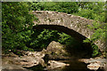 NY1800 : Doctor Bridge, Eskdale by Peter Trimming