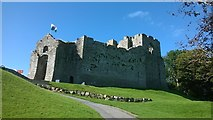 SS6188 : Oystermouth Castle by Helen