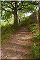 SJ4952 : Sandstone Trail below Maiden Castle by Christopher Hilton