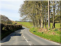 SN9667 : B4518, South West of Rhayader by David Dixon