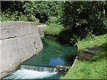 TQ4585 : The Loxford Water in Barking Park by Marathon