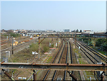 TQ2182 : West Coast main line at Willesden Junction by Robin Webster