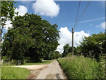 TM0850 : The Lane, Nettlestead by Adrian Cable