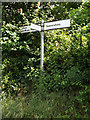 TM0749 : Roadsign on Ipswich Road by Adrian Cable
