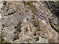 NF6803 : Rivet benchmark on roadside rock near Cuidhir, Barra by Becky Williamson