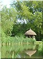 TQ0212 : Thatched hide or gazebo, Amberley Castle by Rob Farrow