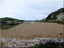 D0345 : Small beach, Ballintoy by Kenneth  Allen
