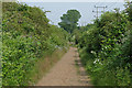 TQ0372 : Footpath beside the Staines by-pass by Alan Hunt
