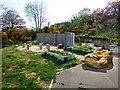 NS2875 : Belville Community Garden by Thomas Nugent