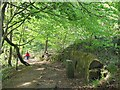 SE2438 : Footpath in the woods above Troy by Stephen Craven
