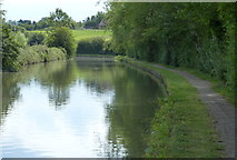 SP8828 : Towpath along the Grand Union Canal by Mat Fascione