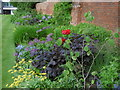SK5218 : Garden at Loughborough University by Marathon