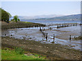 NS3474 : Port Glasgow Timber Ponds by Thomas Nugent