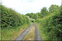 NX4355 : Lane to Jubilee Terrace, Wigtown by Billy McCrorie