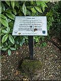 TL3514 : Pulham Stone in Park near River Lea, Ware, Hertfordshire by Christine Matthews
