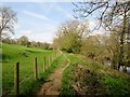 SE1960 : Nidderdale  Way  between  fence  and  River  Nidd by Martin Dawes